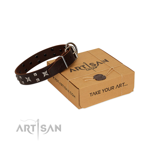 Full grain leather dog collar with remarkable adornments for daily walking