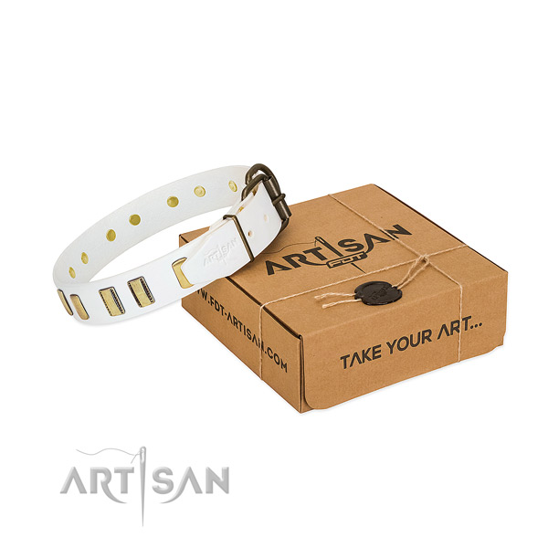 Top notch full grain genuine leather dog collar with adornments for stylish walking