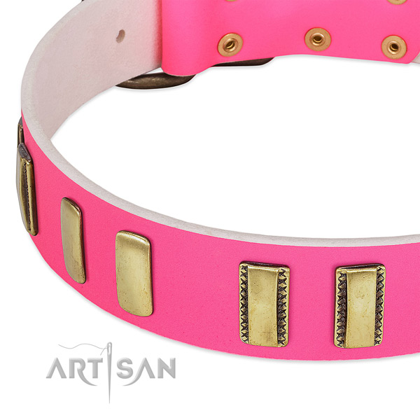 Top notch full grain leather dog collar with adornments for comfy wearing