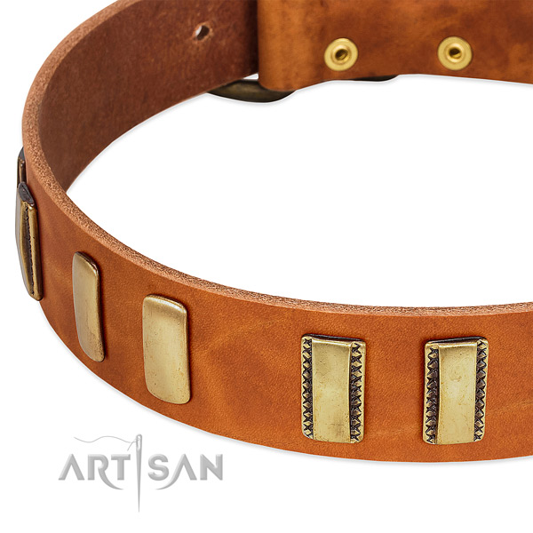 Best quality full grain genuine leather dog collar with adornments for handy use