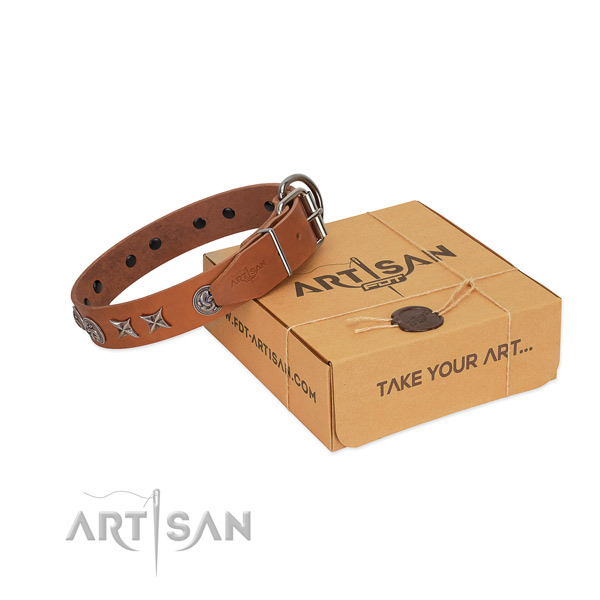 Exceptional genuine leather collar with embellishments for your canine