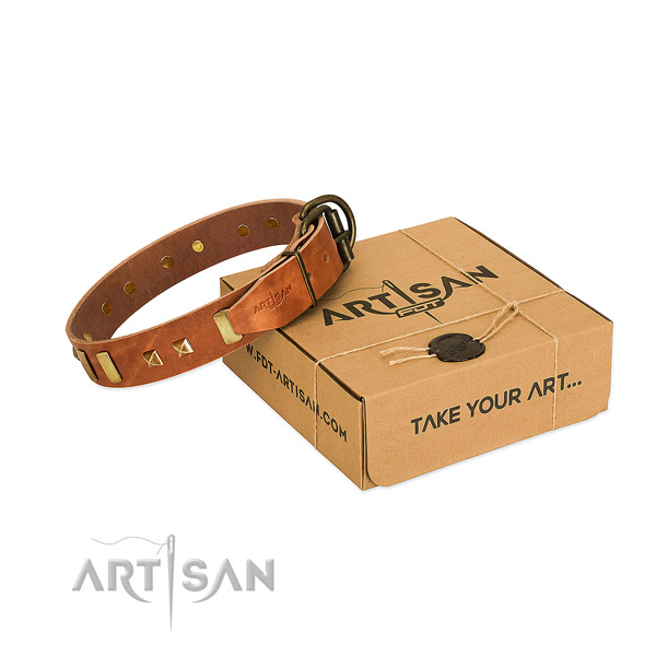Top notch full grain leather dog collar with studs for easy wearing