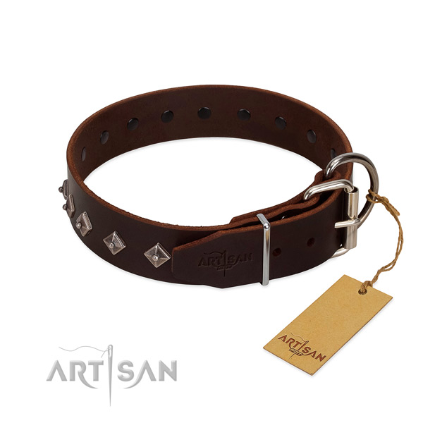 Significant adornments on genuine leather collar for daily walking your four-legged friend