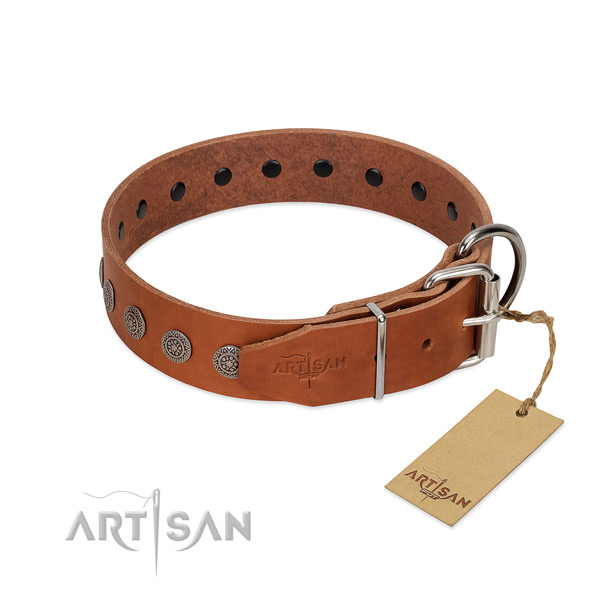Amazing decorations on leather collar for easy wearing your four-legged friend