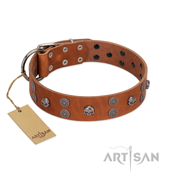 Soft natural leather dog collar with decorations for walking