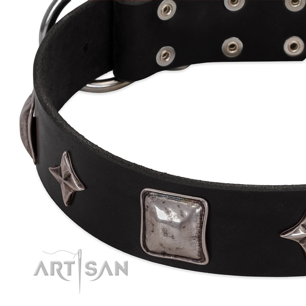 Everyday use full grain genuine leather dog collar with incredible studs