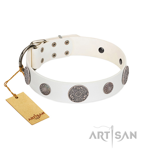 Stunning full grain leather collar for your attractive pet
