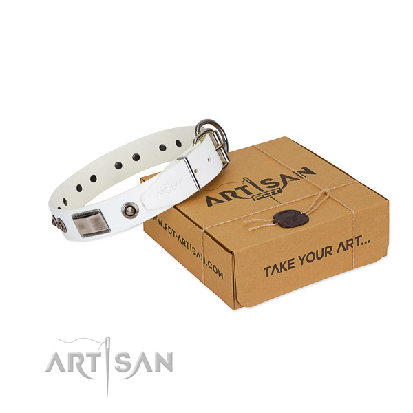 Flexible leather dog collar with studs