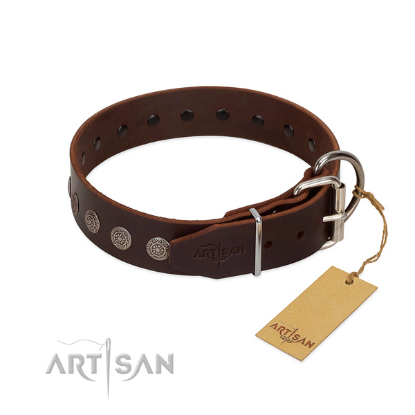Fashionable genuine leather collar for your pet