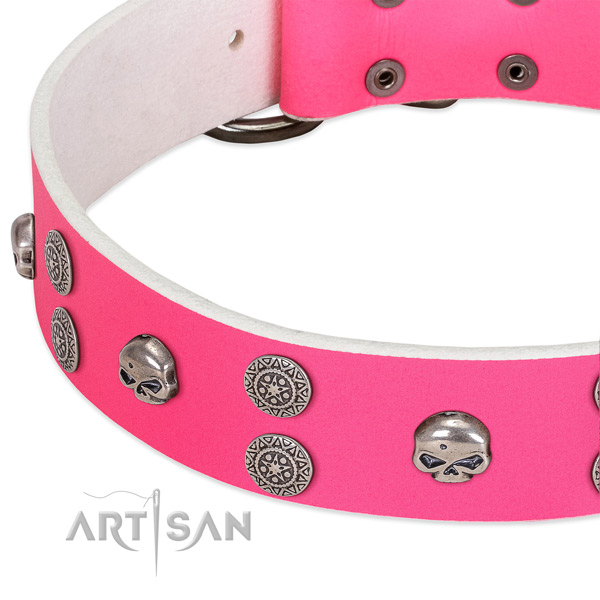 Soft to touch natural leather dog collar with unique studs