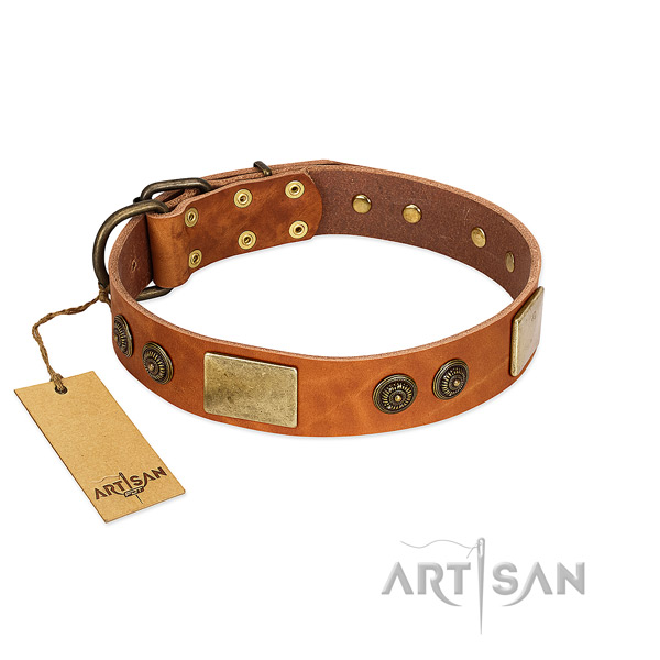 Remarkable full grain natural leather dog collar for easy wearing