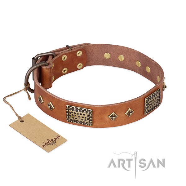 Studded full grain genuine leather dog collar for daily walking