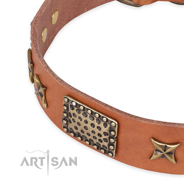 Genuine leather collar with reliable traditional buckle for your attractive doggie