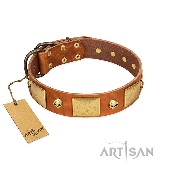 Durable leather dog collar with corrosion resistant embellishments