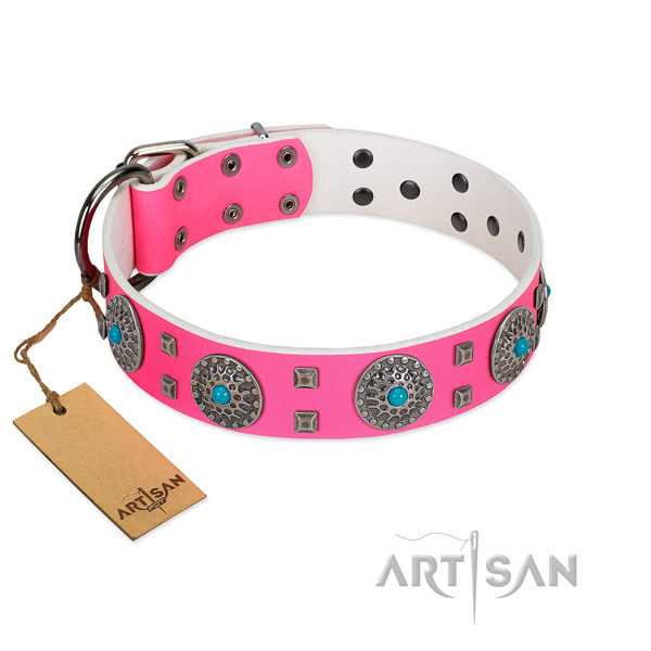 Walking natural leather dog collar with exquisite adornments