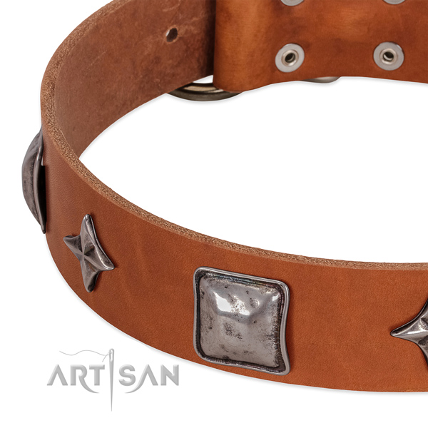 Full grain leather collar with awesome studs for your dog