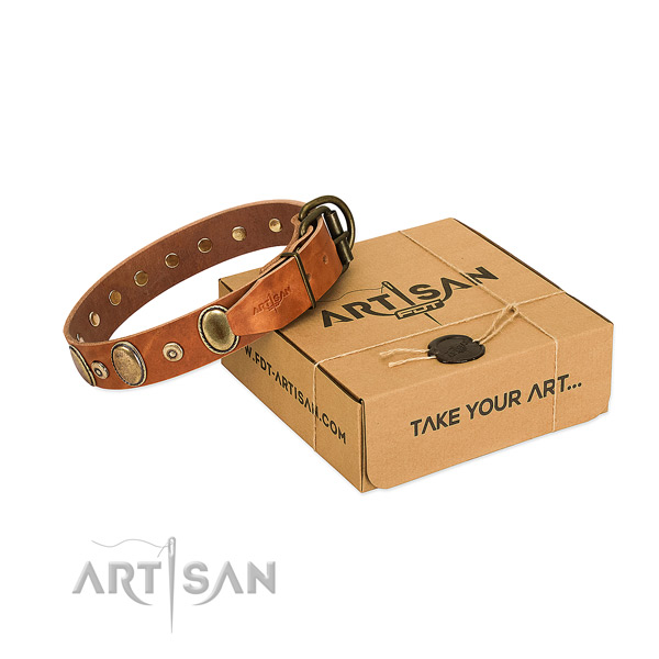 Best quality genuine leather collar crafted for your dog