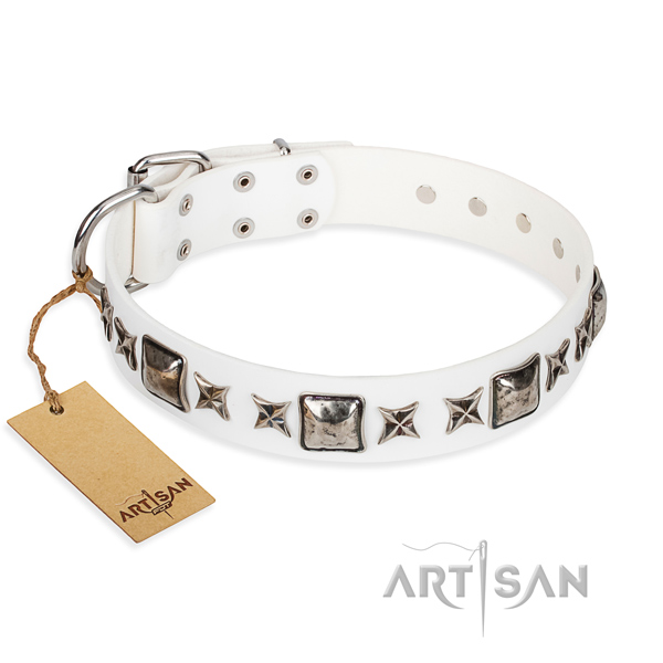 Stylish walking dog collar of top quality full grain leather with studs