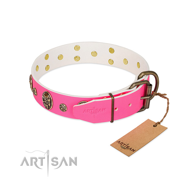 Rust resistant buckle on natural leather collar for daily walking your four-legged friend