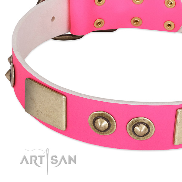 Corrosion resistant decorations on genuine leather dog collar for your dog