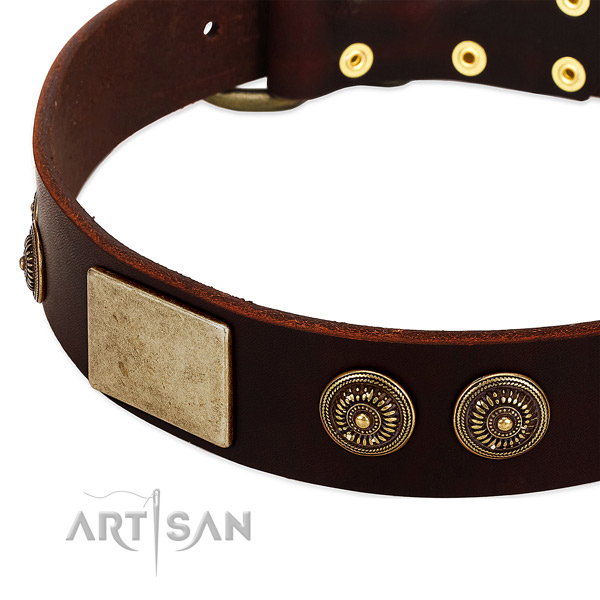Durable traditional buckle on full grain leather dog collar for your four-legged friend