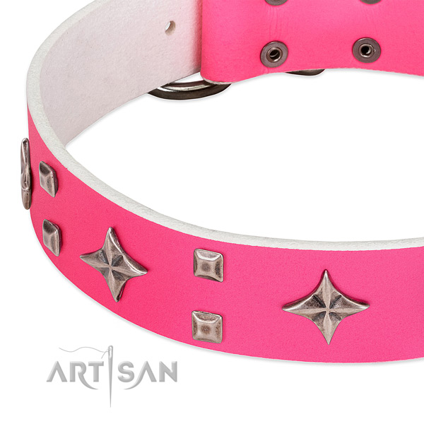Everyday walking top notch full grain natural leather dog collar with decorations