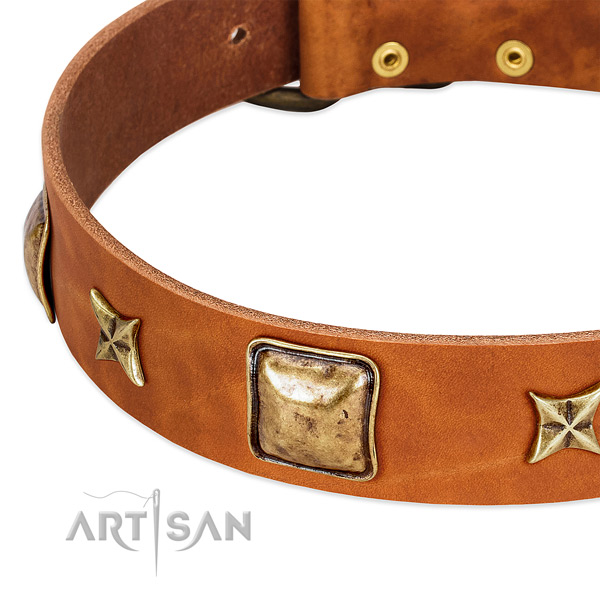 Rust-proof buckle on full grain genuine leather dog collar for your pet