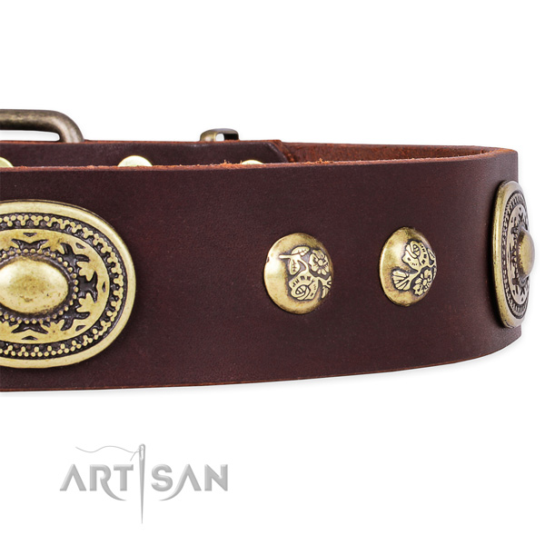 Awesome full grain genuine leather collar for your beautiful pet