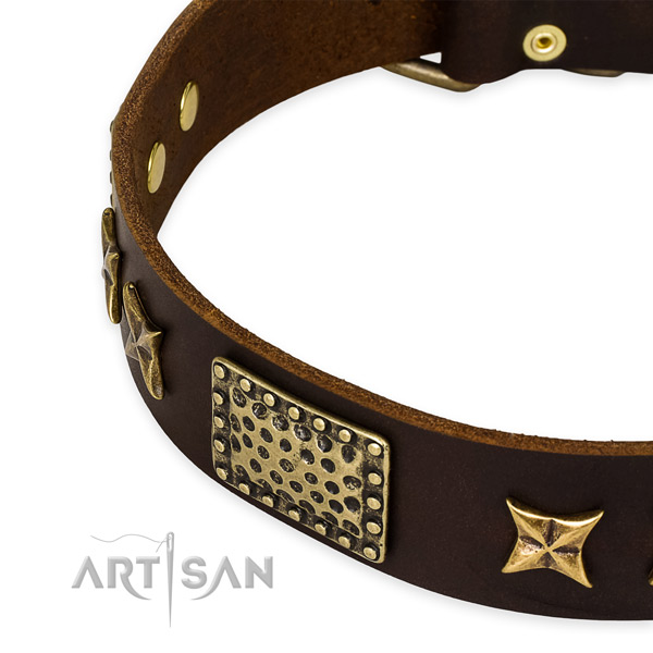 Genuine leather collar with rust resistant fittings for your lovely dog