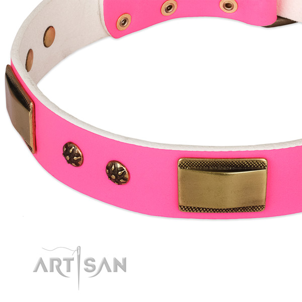 Corrosion resistant fittings on leather dog collar for your doggie
