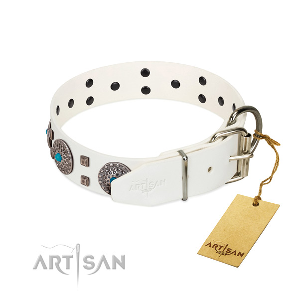Reliable full grain leather dog collar with embellishments for daily use