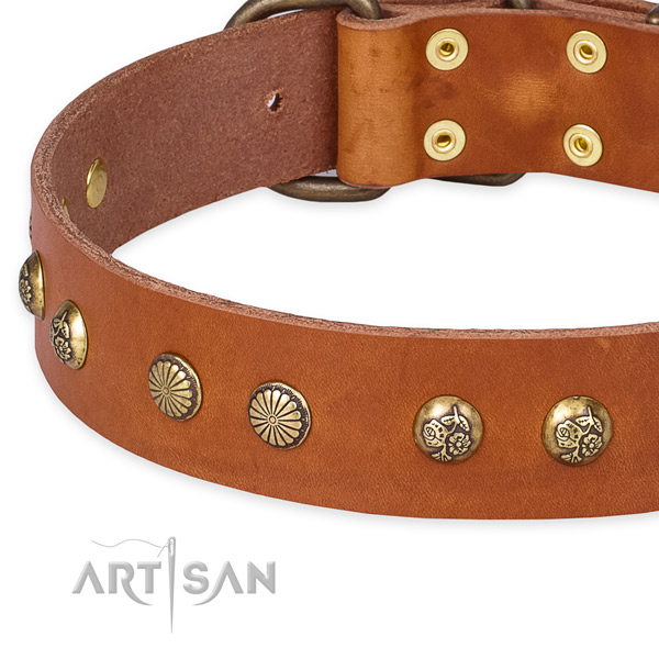 Genuine leather collar with rust resistant buckle for your handsome doggie