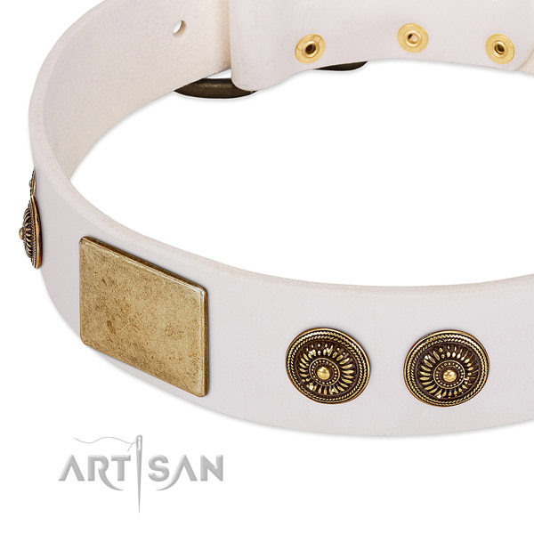 Comfortable dog collar made for your handsome four-legged friend
