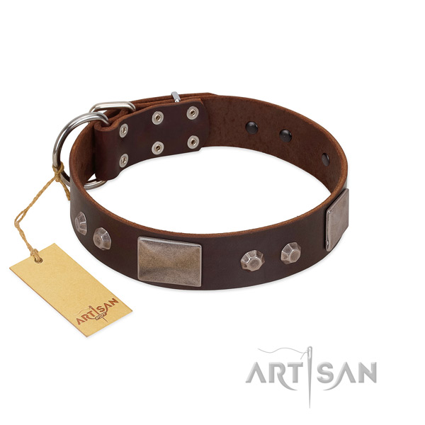 Trendy full grain leather dog collar with corrosion resistant D-ring