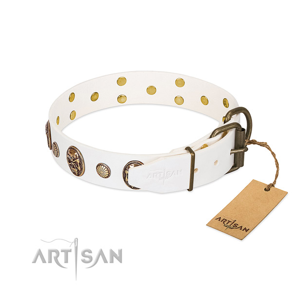 Rust-proof fittings on genuine leather collar for fancy walking your canine