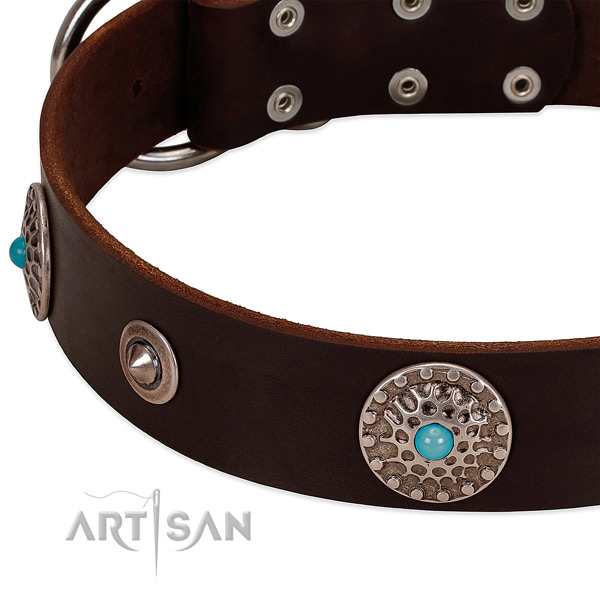 Impressive collar of natural leather for your beautiful four-legged friend