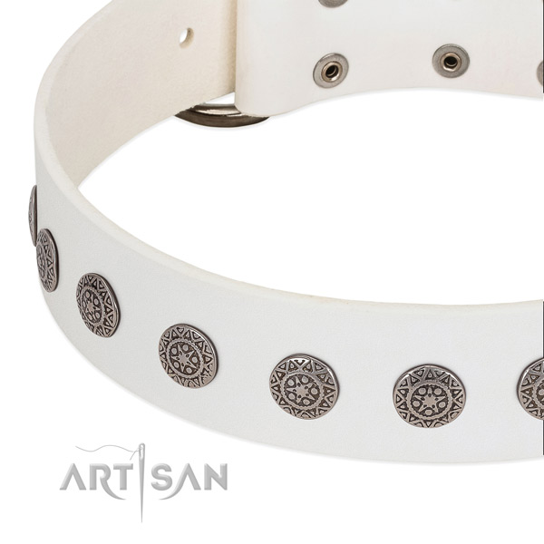 Convenient full grain leather collar with embellishments for your canine