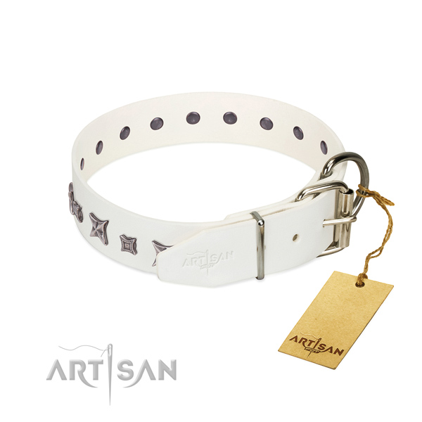 Natural leather dog collar with amazing studs handcrafted canine