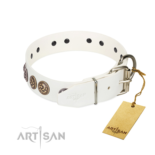 Rust-proof buckle on significant full grain natural leather dog collar
