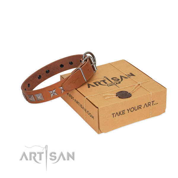 Natural leather dog collar with remarkable embellishments created dog