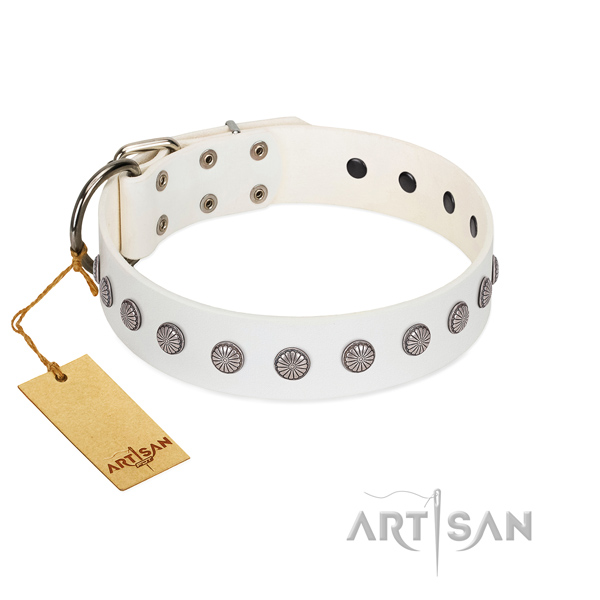 Awesome adornments on full grain leather collar for comfy wearing your doggie