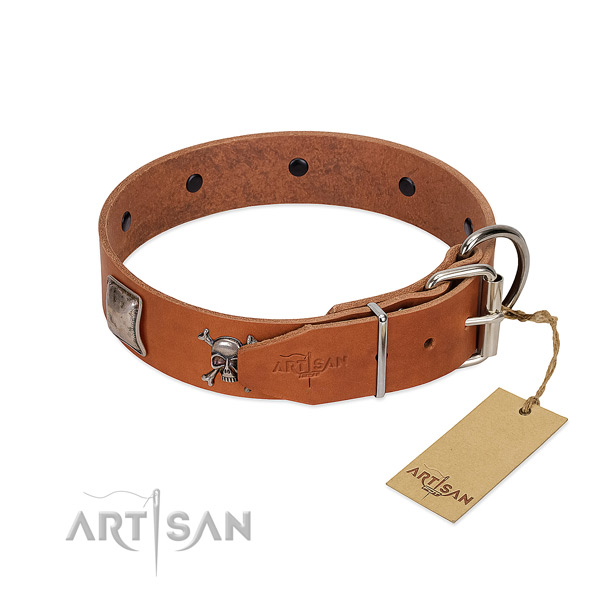 Embellished full grain genuine leather collar for your stylish dog