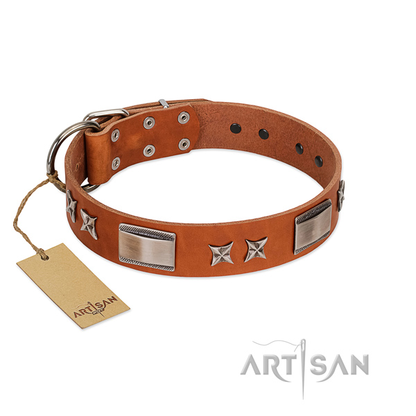 Top notch full grain natural leather dog collar with durable fittings