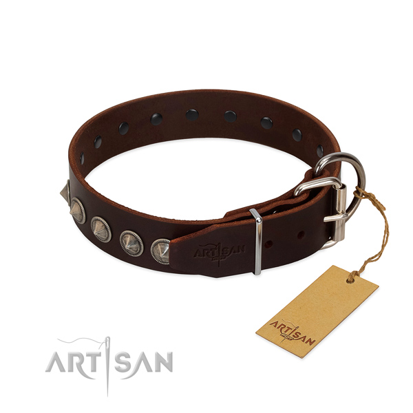 Exceptional studded full grain genuine leather dog collar for fancy walking