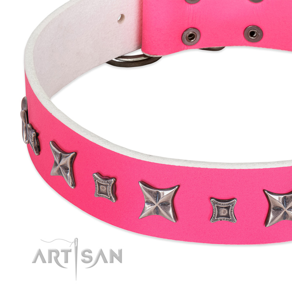 Fancy walking studded genuine leather collar for your four-legged friend
