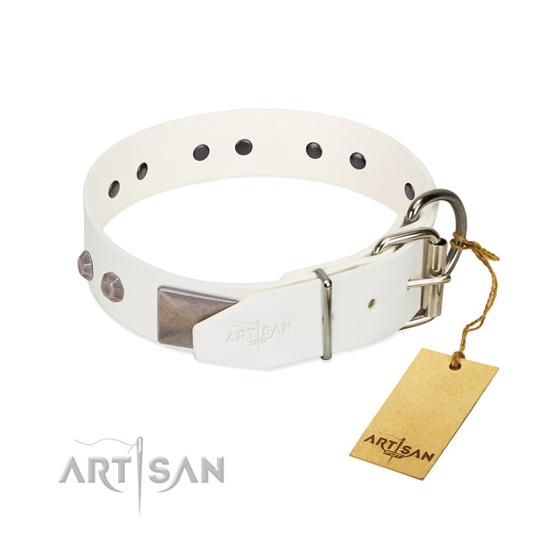 Handy use dog collar of natural leather with top notch embellishments
