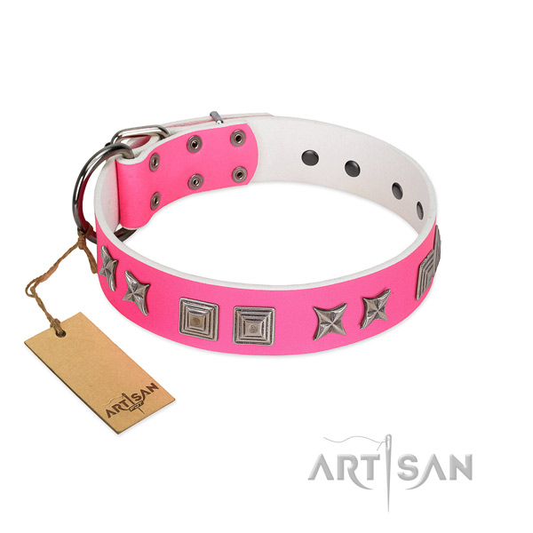 Leather dog collar with amazing studs made four-legged friend
