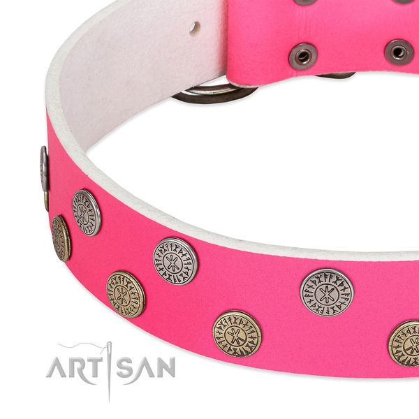 Flexible full grain natural leather dog collar with studs for walking