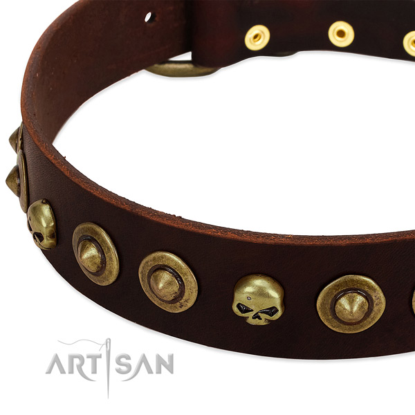 Fashionable decorations on genuine leather collar for your four-legged friend