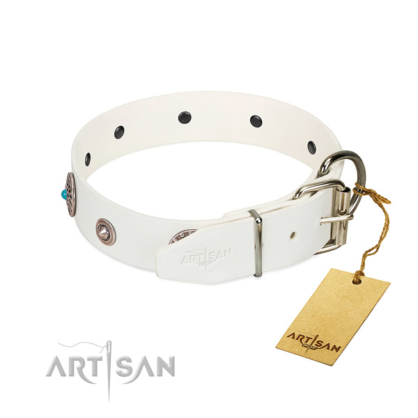 Significant studded full grain genuine leather dog collar